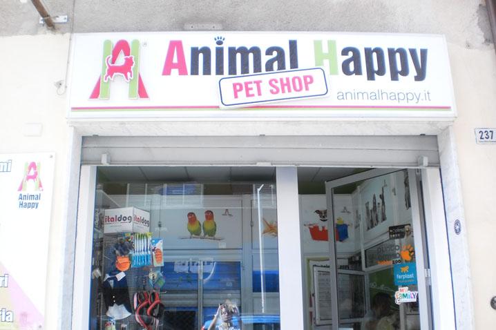 wikiweb-animalhappy-01.jpg