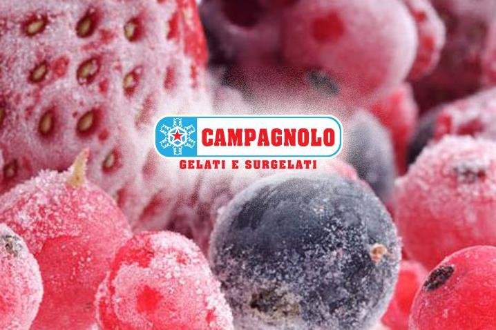 wikiweb-campagnolo-00